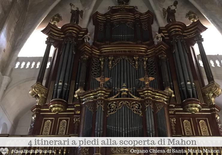 L'ottocentesco organo custodito nella Chiesa di Santa Maria