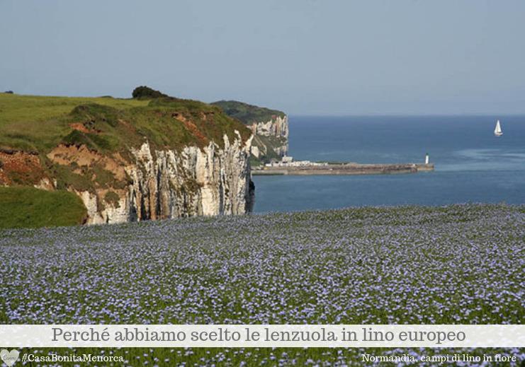 La Normandia è leader mondiale per la produzione di lino tessile