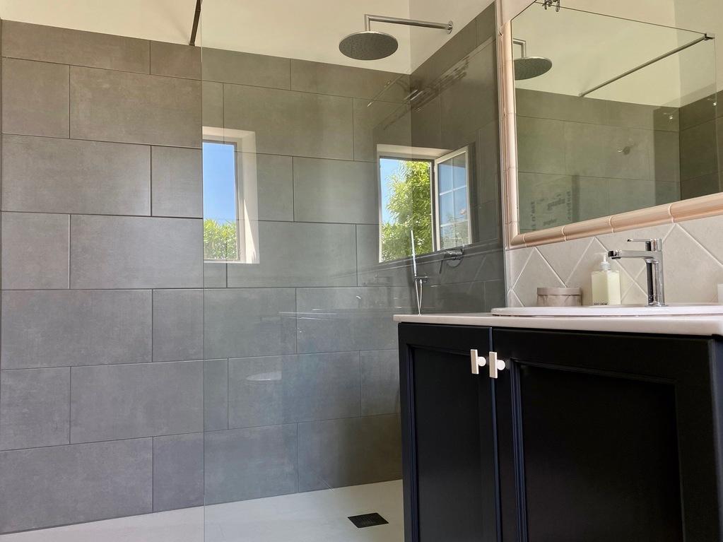shower Einstein